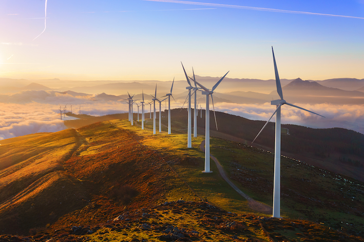 A Beginner's Guide to Careers in Renewable Energy